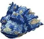 【タイダイ】インドのクリンクルストール- 紺×水色