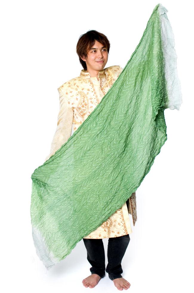 (タイダイ) インドのクリンクルストール - 緑×ベージュ 8 - サイズを感じていただく為、身長174cmの男性店員に持ってもらいました。