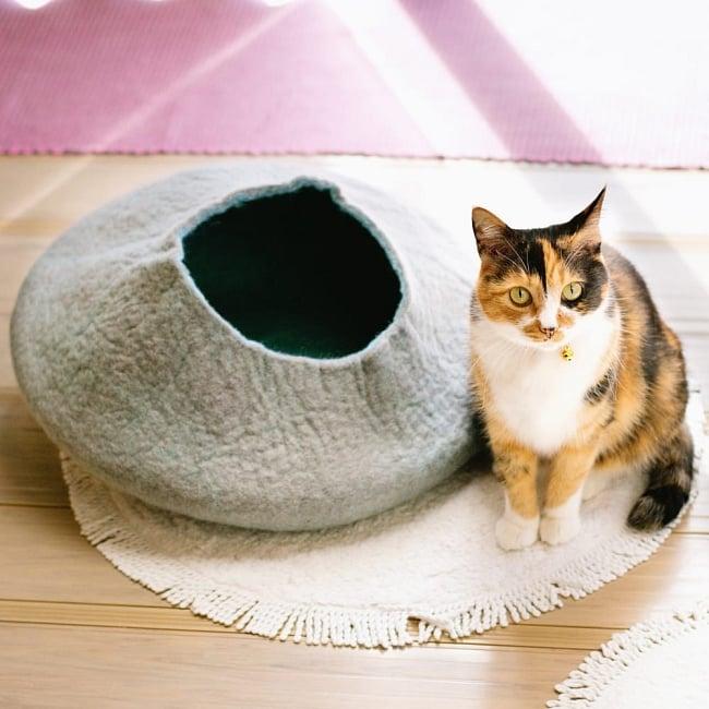 ネパールフェルトのキャットハウス 10 - 成猫でもすっぽり入れる大きさです