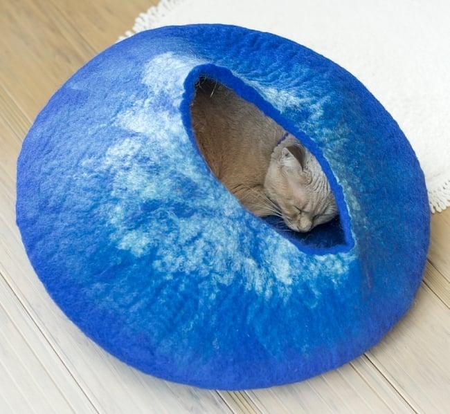 ネパールフェルトのキャットハウス ブルーの写真2 - ベッドになったりざぶとんになったり、いろいろな遊び方をしてくれます。
