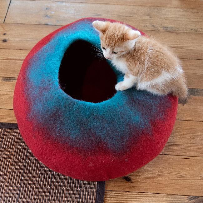 ネパールフェルトの猫ちぐら しっかりめ丸形タイプ 10 - 従来品に比べて固めになったので子猫くらいの重さだったら形が崩れずに乗れます。