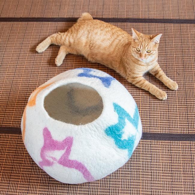 ネパールフェルトの猫ちぐら しっかりめ丸形タイプ 2 - 成猫ちゃんとのツーショットです。