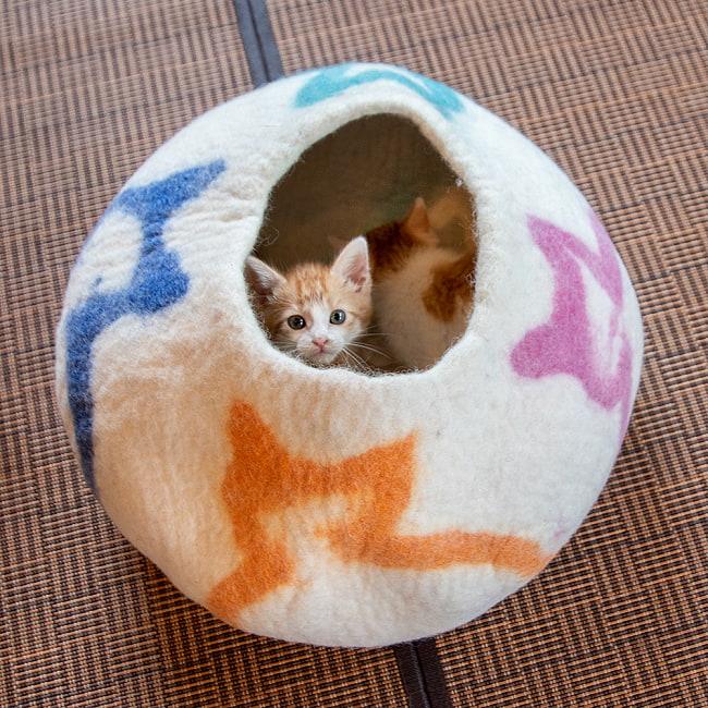 ネパールフェルトの猫ちぐら しっかりめ丸形タイプ 3 - 2ヶ月半くらいの子猫2匹が仲良く入ってます。