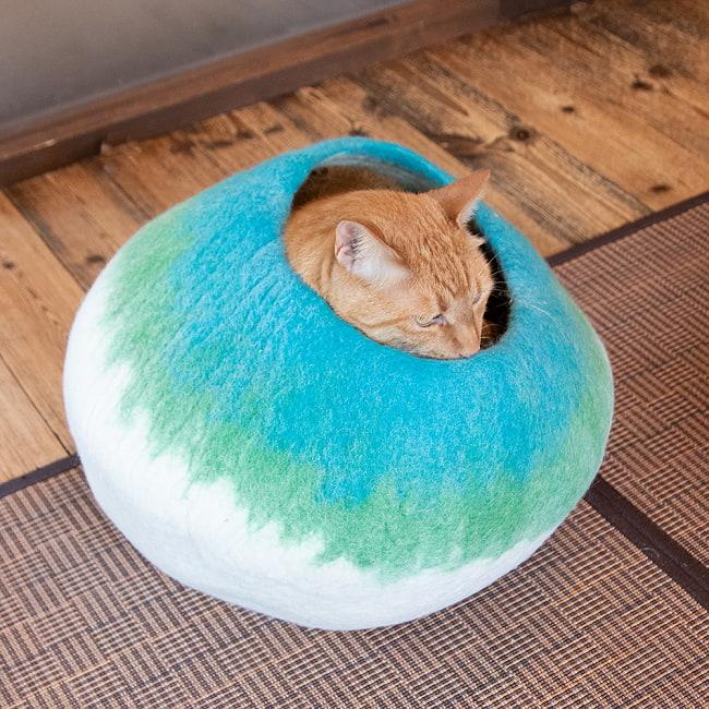 ネパールフェルトの猫ちぐら しっかりめ丸形タイプ 4 - 成猫もすっぽり収まります。
