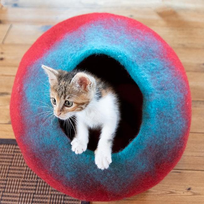 ネパールフェルトの猫ちぐら しっかりめ丸形タイプの写真