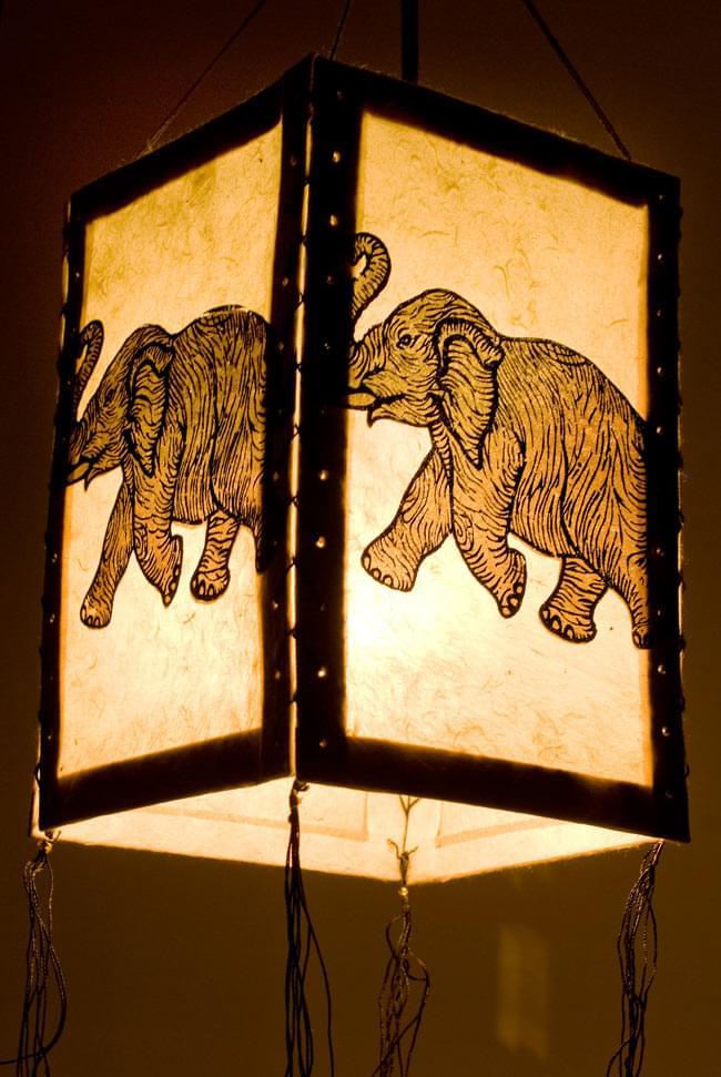 ロクタ紙 -四面ランプシェード 象の写真