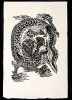 ロクタ紙ポスター - ドラゴン