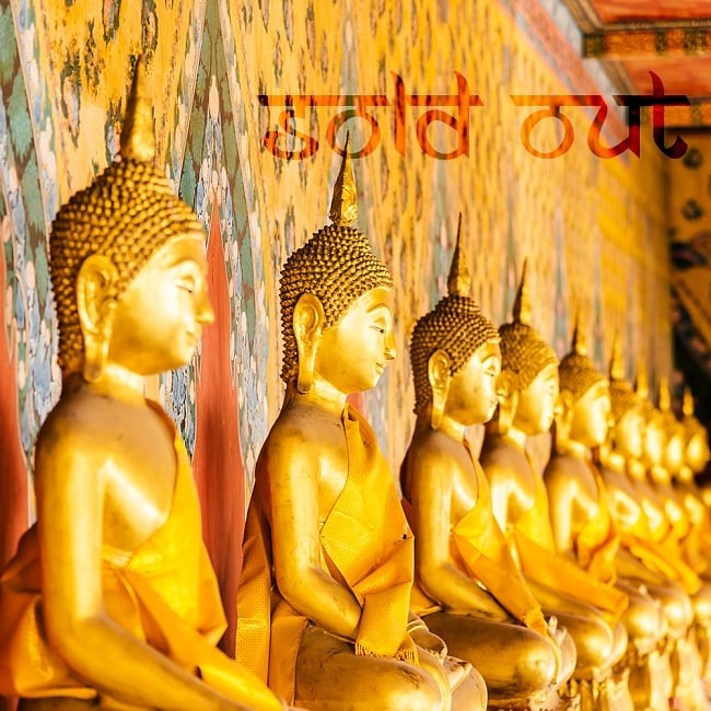 【ワケアリ】超特大マンダラ - ブッダの一生(Life of Buddha)の写真