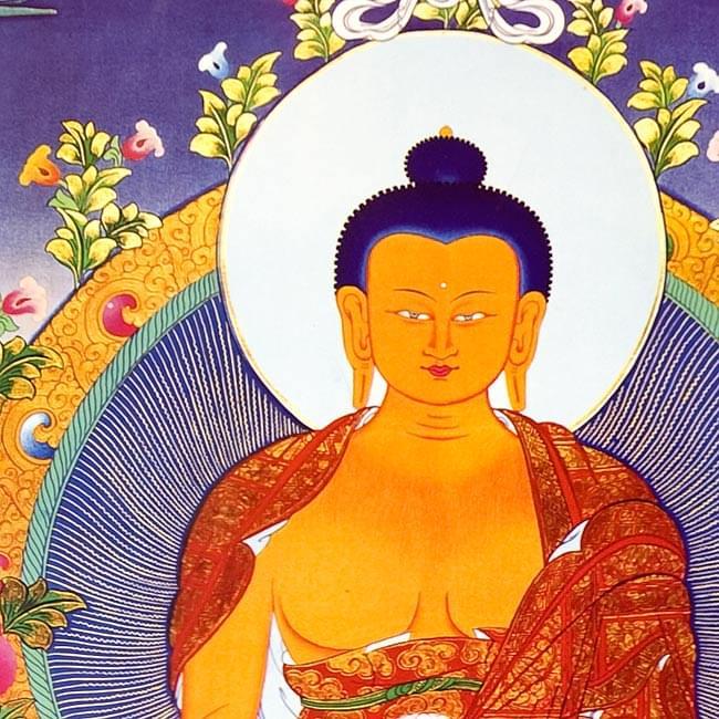タンカのポスタ - Sakyamuni Buddha 2 - 一部分を拡大してみました