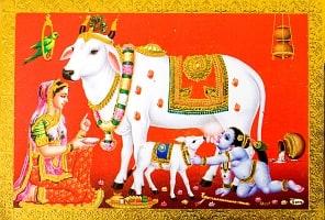 金の神様ポストカード-白い牛とベイビークリシュナ