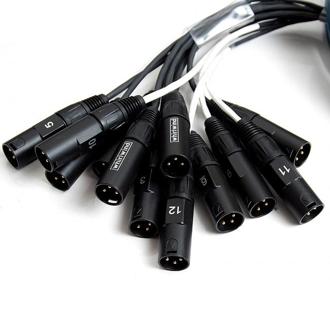 Whirlwind - メドゥーサ ミニ マルチケーブル 12Ch  7m [レンタル] 3 - コネクターの部分を拡大しました。