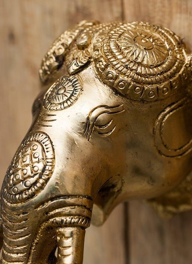 ゾウのドアベルの写真3 - 厳かな顔立ちです。