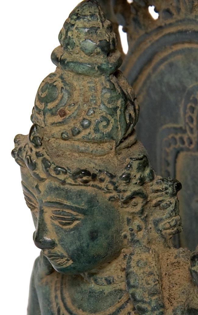 ターラー(28.6cm) 3 - 顔の拡大写真です。