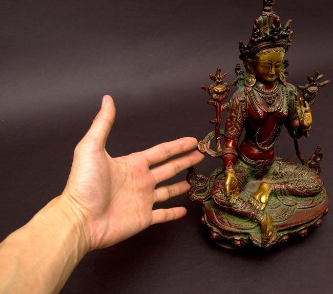 カディラヴァーニー・ターラー(グリーンターラー)[31cm]の写真8 - サイズが分かるように、手に持ってみました