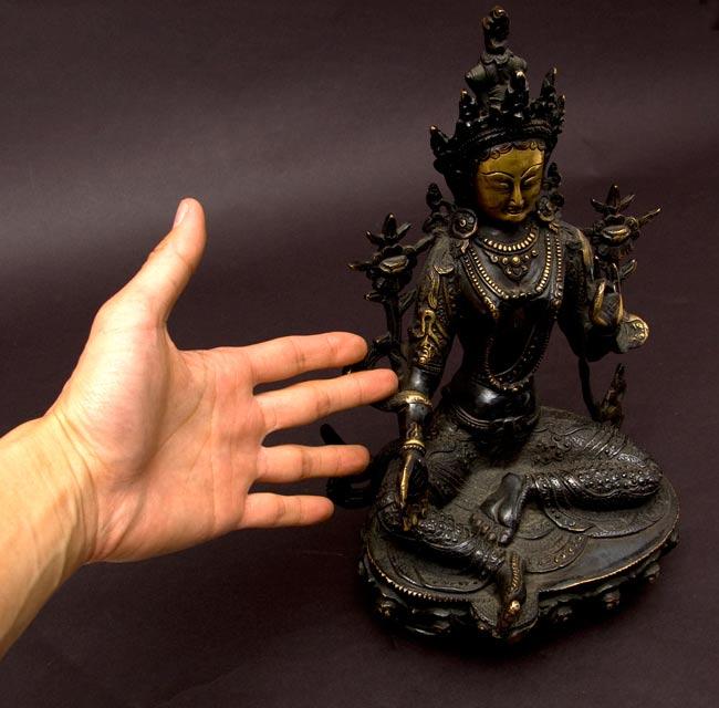 カディラヴァーニー・ターラー(グリーンターラー)[31cm]の写真7 - サイズが分かるように、手に持ってみました