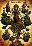 DANCE OF SHIVA 2009[DVD]