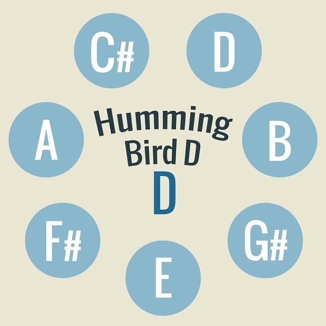 ハンドパン Humming Bird D【59cm - 8notes】 -ソフトケース付属 2 - 当商品の音階位置はこのようになっております。