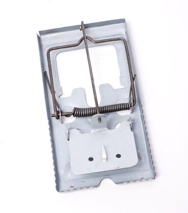 ネズミ捕り【バネ式】 4 - 下方の薄い金属板にエサを置いて使用します。感度はペンチなどの工具で板の角度を調整して下さい。サビがあったりのそれなりの庶民的な品質です